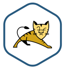 AWS Marketplace: Tomcat Certified by Bitnami